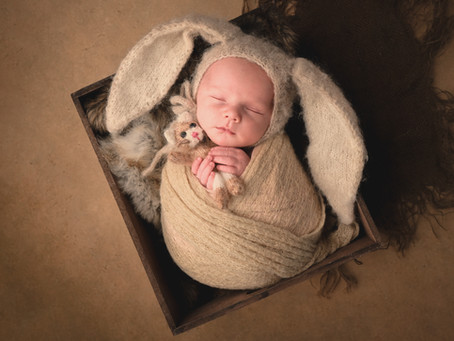 Photographe du nouveau-né dans le Pays de Gex, les formations