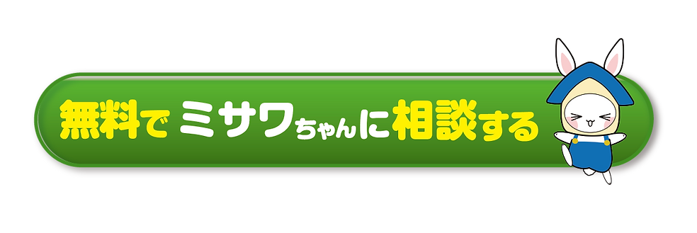 misawachanbottan-01.png