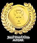 CCIFF-ATEAR-ShortFilm.png