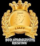 LIAFF-DESTINY-best-amateur-film copy.png