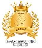 LIAFF-DESTINY-best-amateur-film copy.png