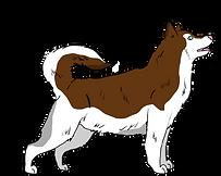 husky4.png