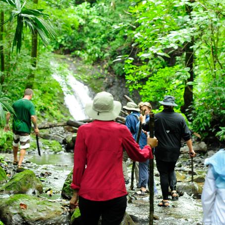 Dreaming of Beautiful Waterfalls?