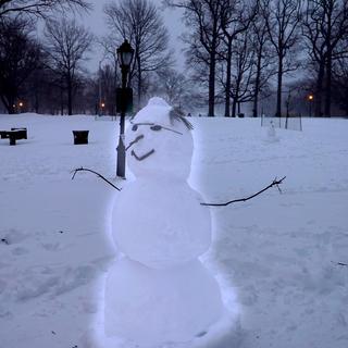 snowguy copy.jpg
