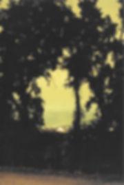 Scan 69 (1).jpg