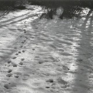 Scan 119 (2).jpg