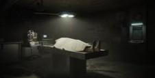 Cadáveres en Verano
