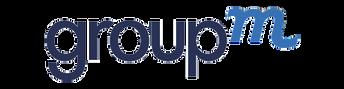 Logos for GMN Web25.png