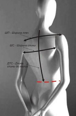 Мерки для верхней одежды