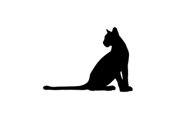 Cat_edited.png