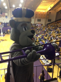 Duke Dog with Purple Pbone