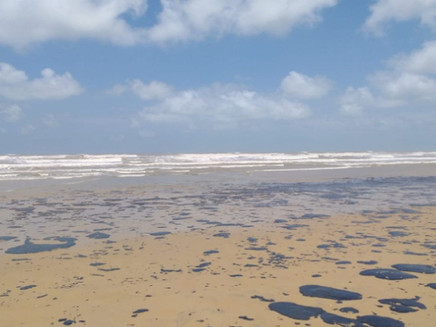 Óleo recolhido no litoral será utilizado como combustível para fornos, diz governador de Sergipe
