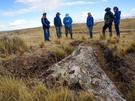 Árvore no Peru indica mudanças climáticas dos últimos 10 milhões de anos