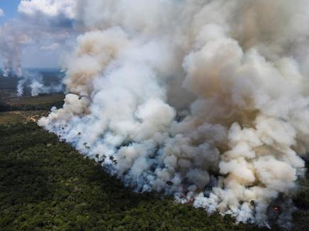Mudança climática afeta decisão de jovens brasileiros sobre ter filho, diz pesquisa internacional