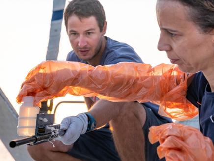 Mudança climática deve alterar o funcionamento de comunidades de microrganismos marinhos