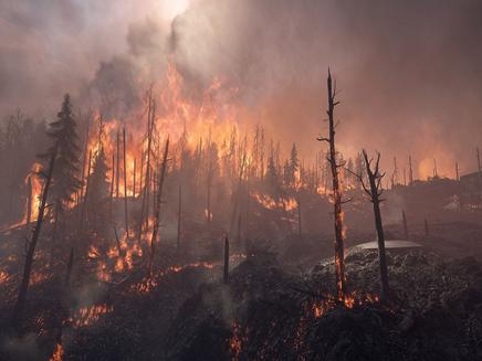 Clima extremo na Sibéria: de incêndios a degelos!