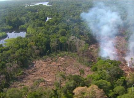 Emissão por desmatamento pode ser 37% maior, sugere estudo