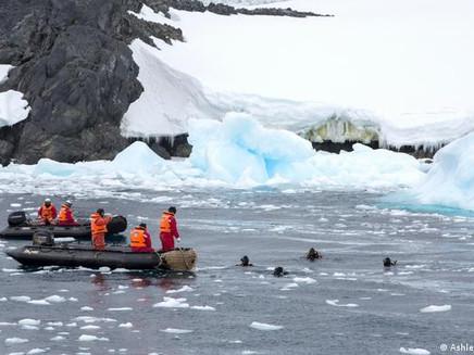 Tratado histórico não protege Antártida de catástrofe climática