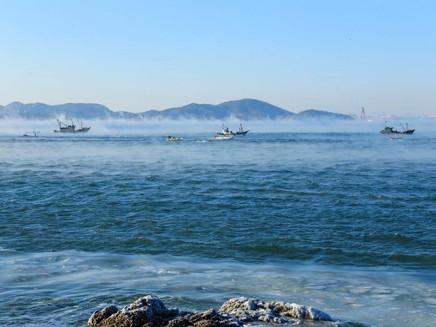 Temperatura na superfície dos oceanos atingiu recorde em 2020