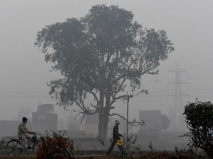 Concentração de gases de efeito estufa na atmosfera bate recorde em 2020, alerta ONU