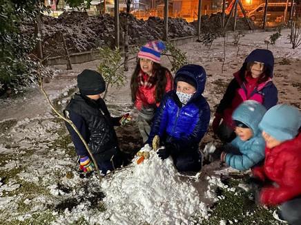 Neve no RS: ao menos 13 cidades registram fenômeno; veja imagens