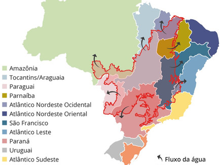 Cerrado é fundamental para evitar racionamento de água e energia no Brasil; entenda