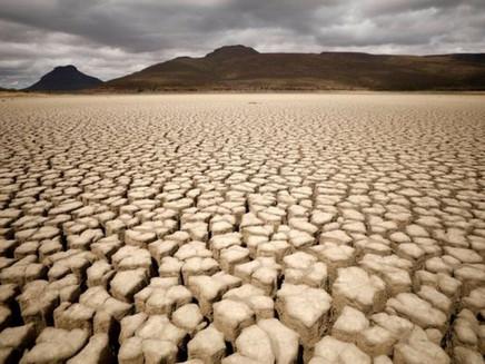 Mudanças climáticas: os efeitos alarmantes sobre o mundo hoje, segundo novo relatório da ONU
