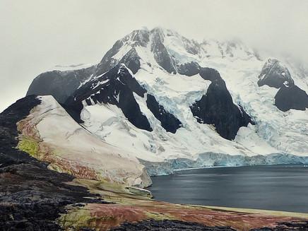 Algas vermelhas e verdes intensificam degelo na península Antártica
