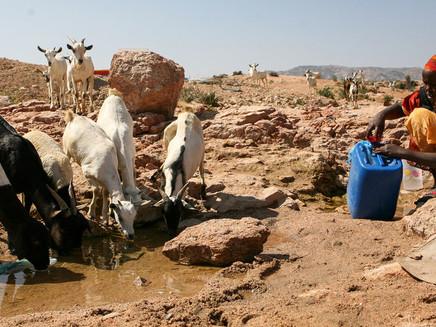 Com crise iminente no setor da água, OMM pede melhor gestão do recurso