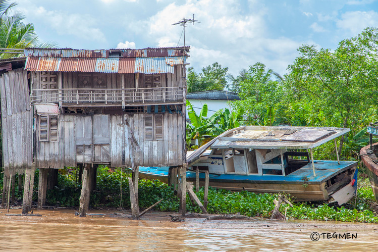 Life in Mekong River