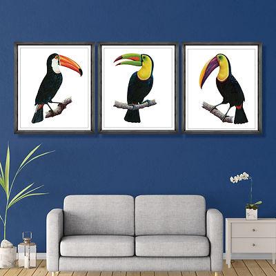 toucans.jpg