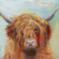 Scruffy Highland cow framed Canvas Print