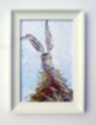 Hooray Hare Canvas Print