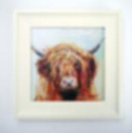 Highland Cow Framed Canvas Print