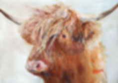Peter Tarrant Contemporary Scottish Landscape Painter, scruffy honey highland cow