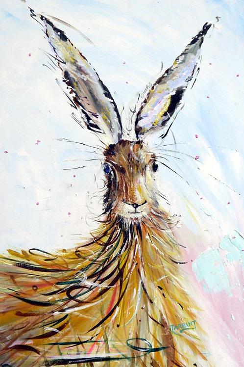 Hairy Hare