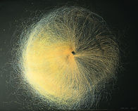 MONMON Black Hole 2.jpg