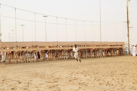 Qatar — 2015
