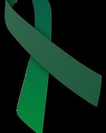 green-ribbon-transparent-10 (1).png