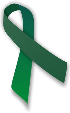 green-ribbon-transparent-10 (1).png