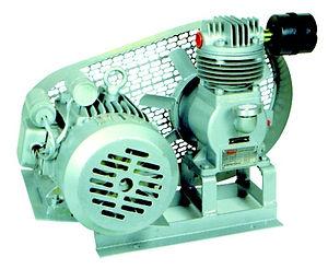 Single-Phase-Mono-Belt-Compressor-Pumps_edited_edited.jpg