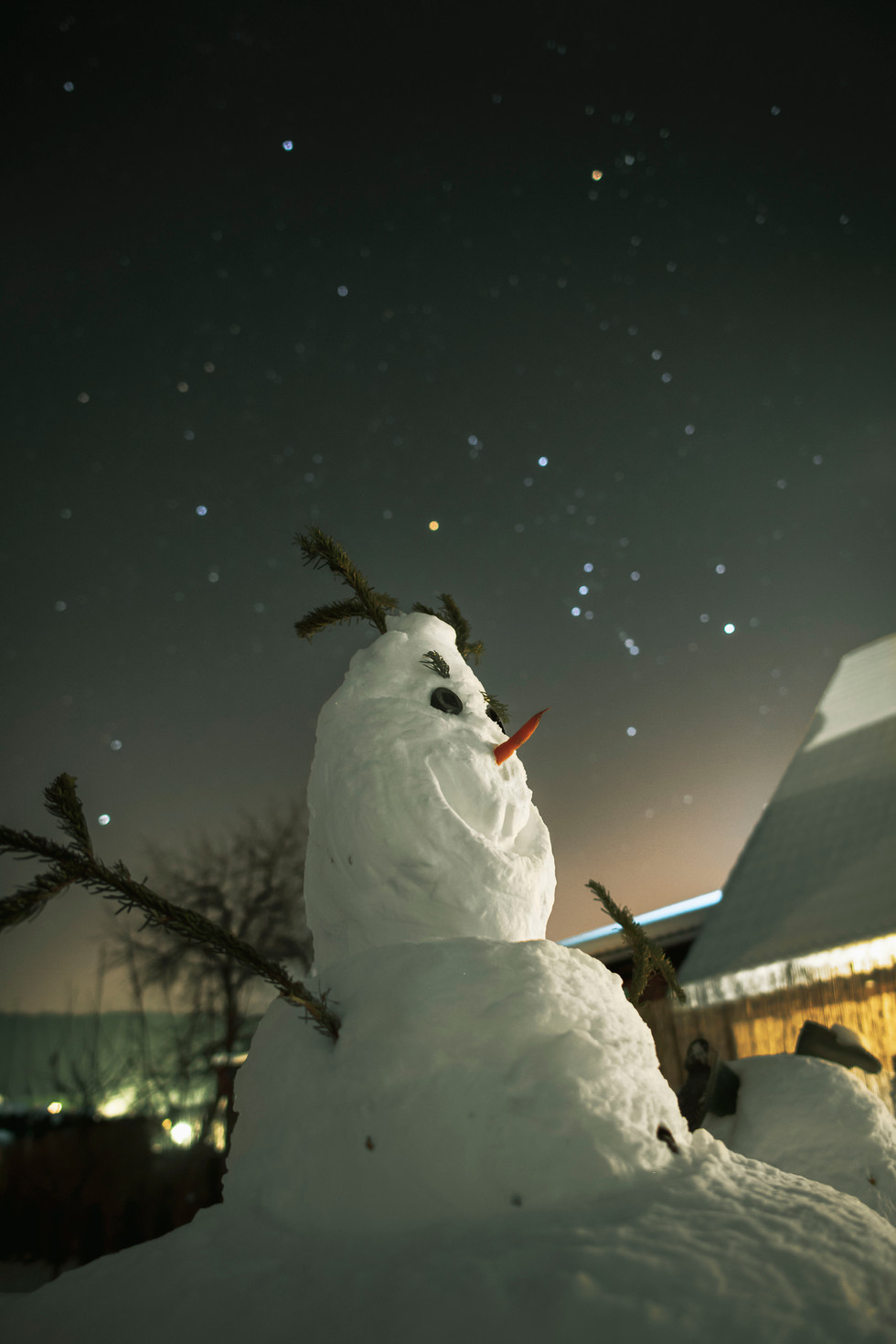 Snowman and constellation Orion..jpg