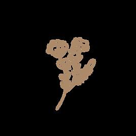 TLF Logo, florals