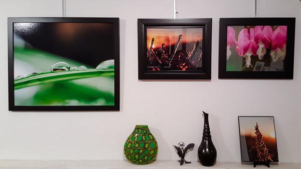 Gallery Work