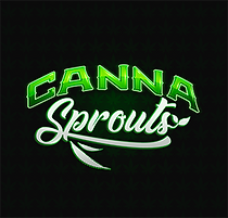 canna-sprouts.png