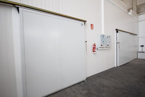 Puertas camara De frio
