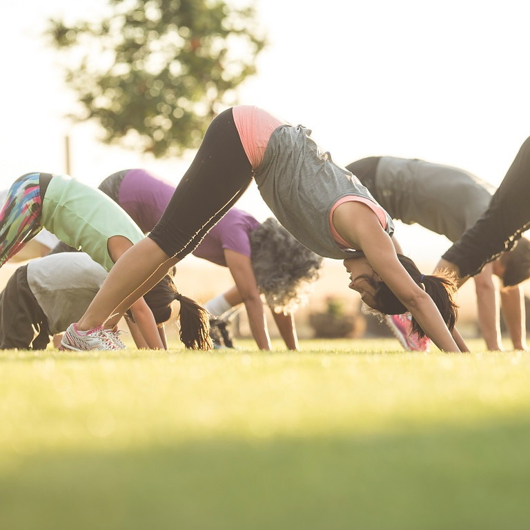 All Levels Yoga On The Farm  8/1