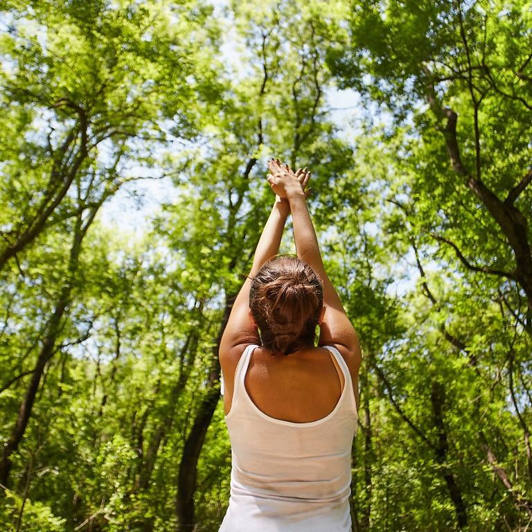 All Levels Yoga On The Farm  8/15