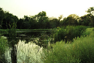 Sunset on a pond at Johnson County wedding venue