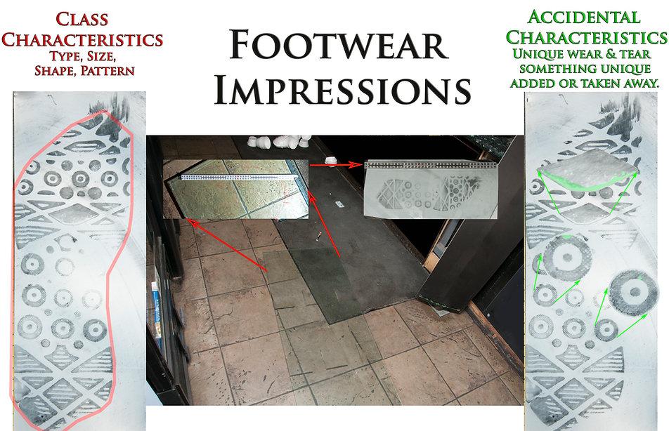 Footwear Graphic 2.jpg